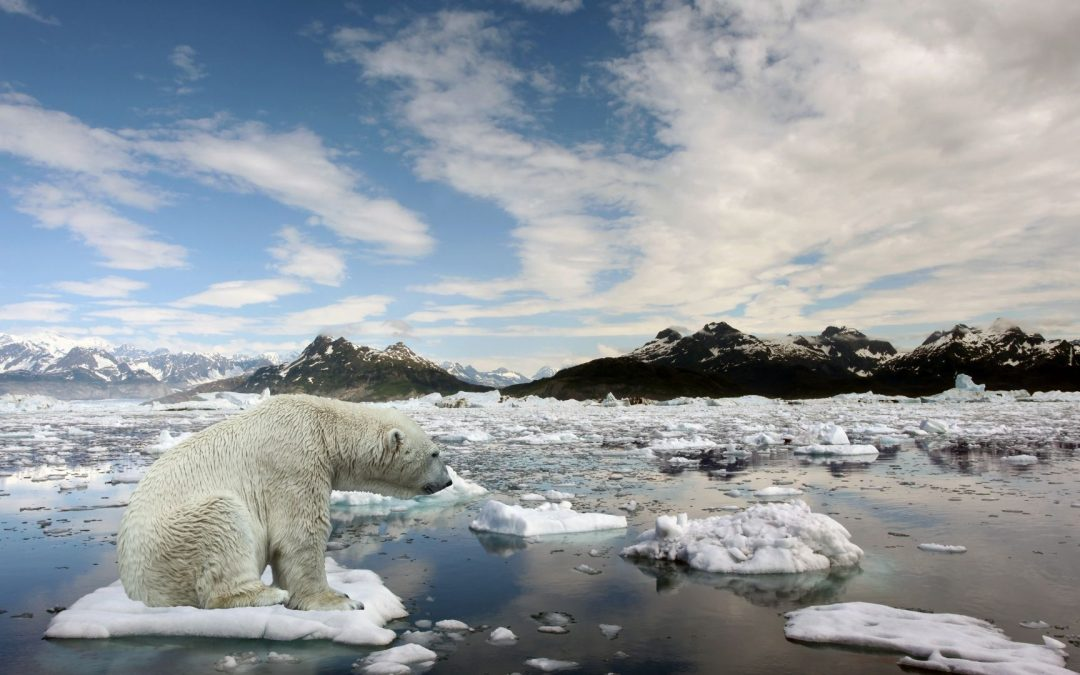 As Climate Change Looms, Companies Should Use BI